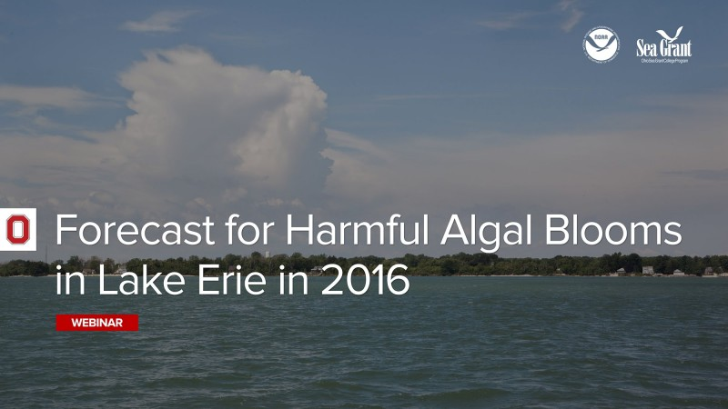 Forecast for Harmful Algal Blooms in Lake Erie in 2016