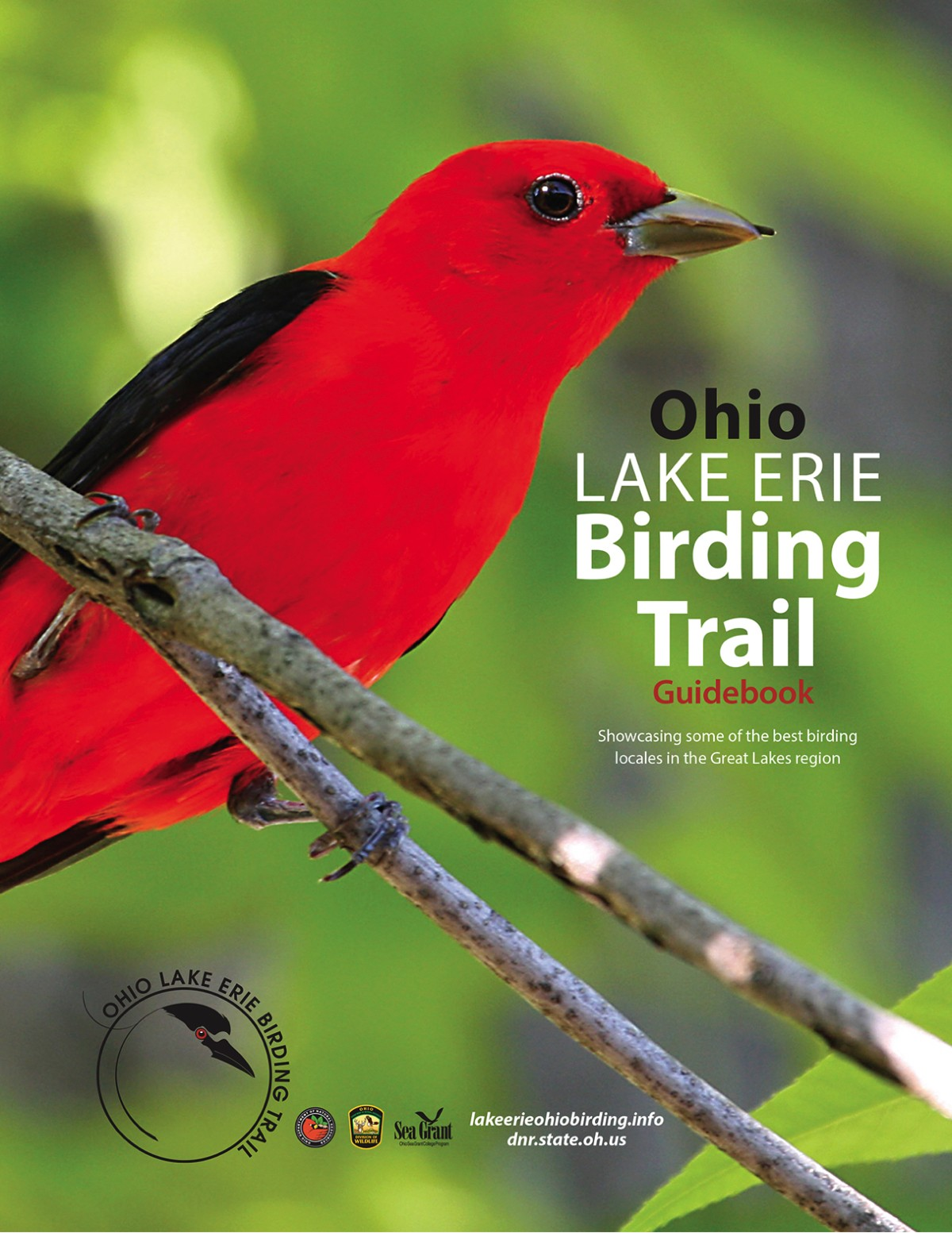Birding Trail Guidebook Cover