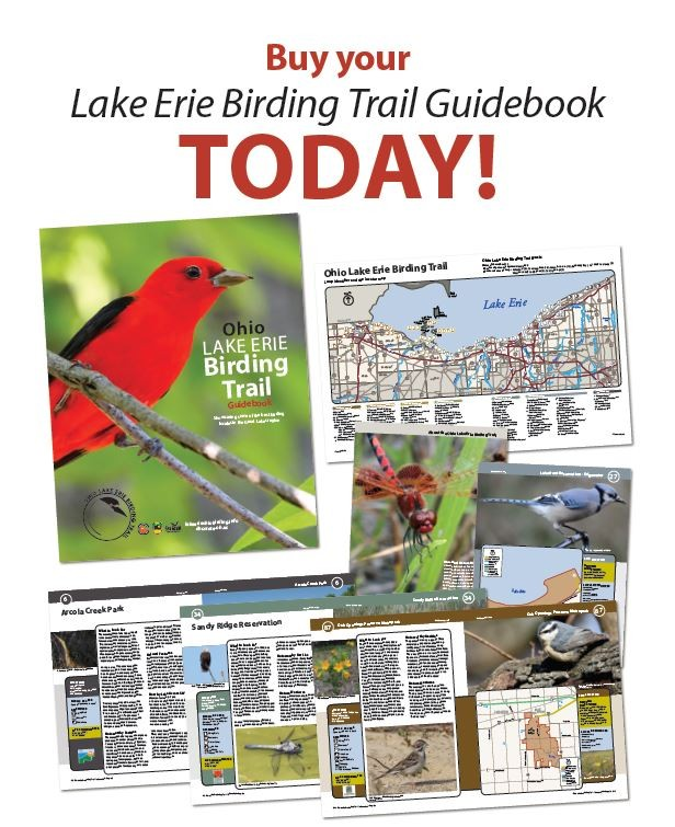 The Lake Erie Birding Trail Guidebook Order From