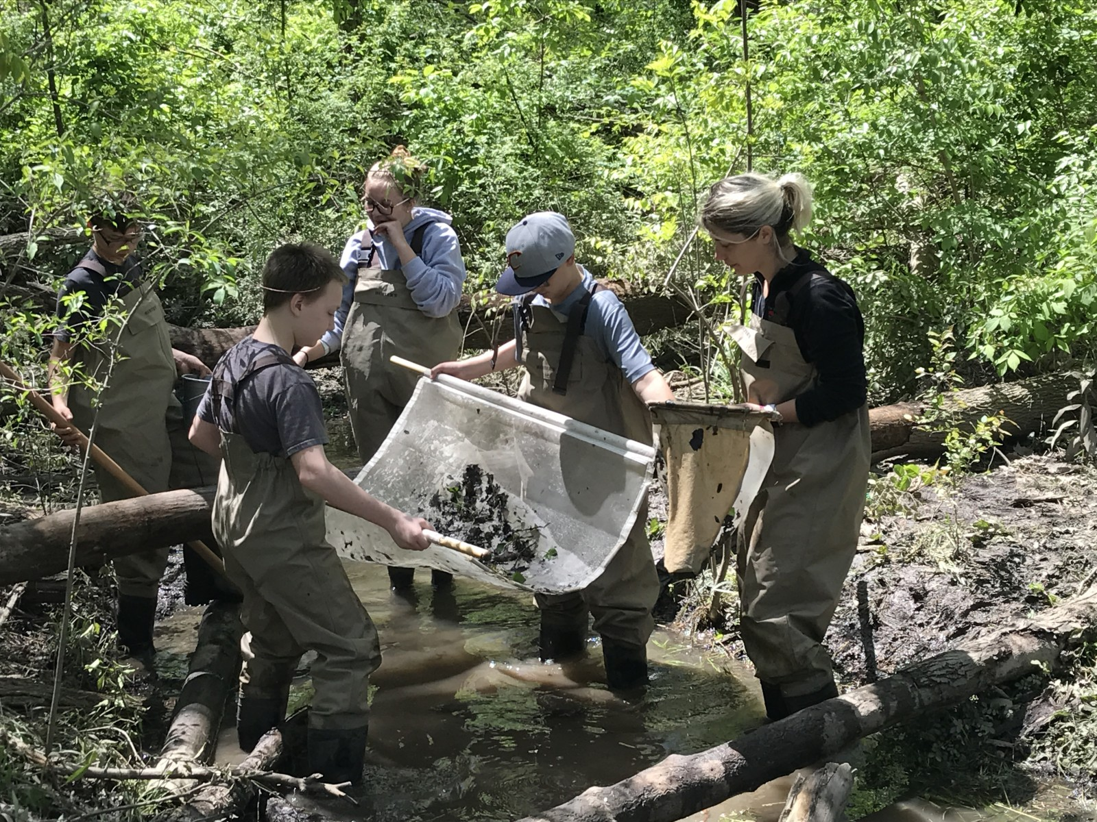 Briar Middle School students search for macroinvertebrates