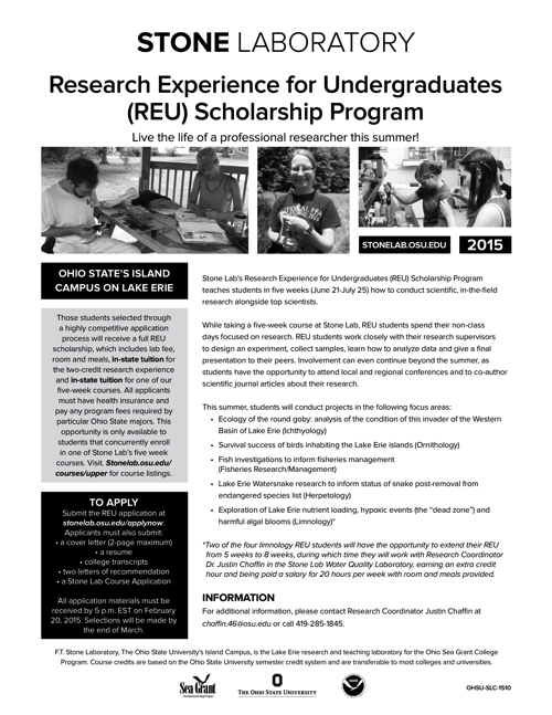 2015 Research Experience for Undergraduates (REU) Scholarship Program Flyer