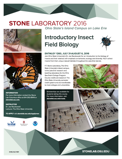 2016 Introductory Insect Field Biology Flyer