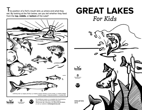 Great Lakes for Kids Ages 3+ Fun Facts Activity Sheet 2016