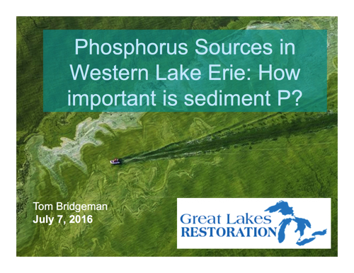 Phosphorus Sources in Western Lake Erie: How important is sediment P?