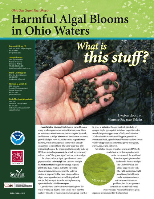 Harmful Algal Blooms in Ohio Waters