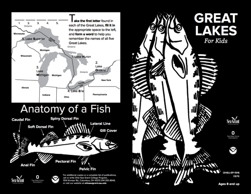 Great Lakes for Kids Circle of Lake Life Ages 8+ Activity Sheet