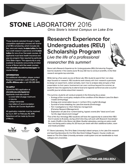 2016 Research Experience for Undergraduates (REU) Scholarship Program Flyer