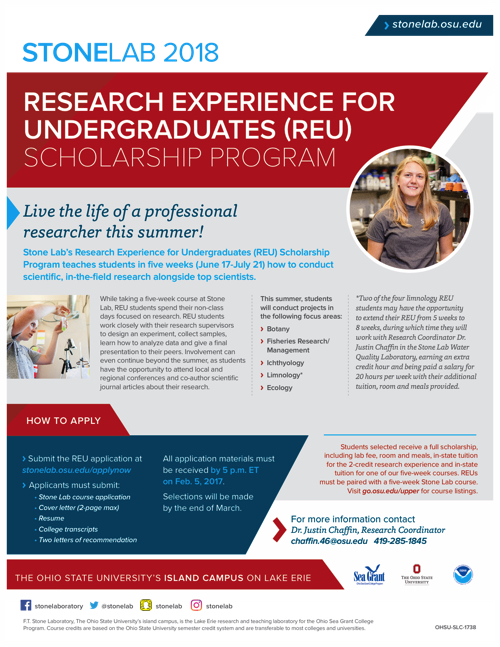 2018 Research Experiences for Undergraduates Flyer