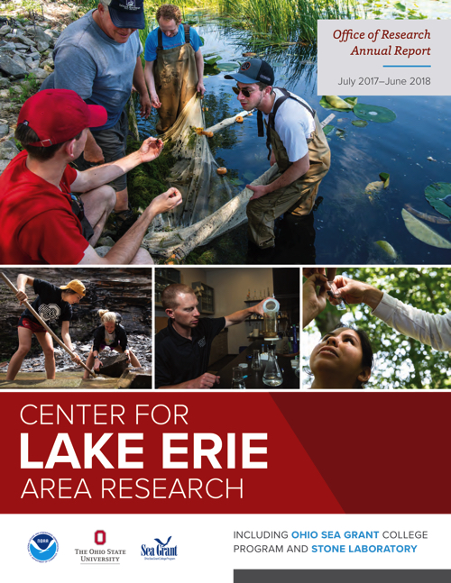 CLEAR's Office of Research Annual Report, July 2017-June 2018
