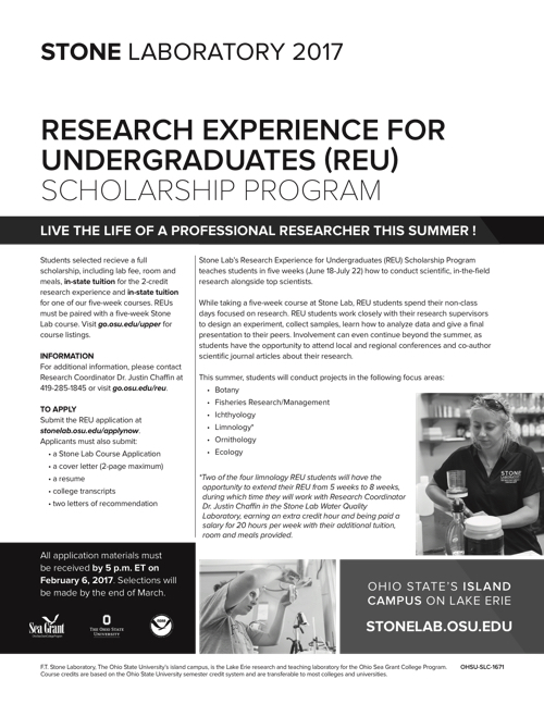 2017 Research Experience for Undergraduates (REU) Scholarship Program Flyer