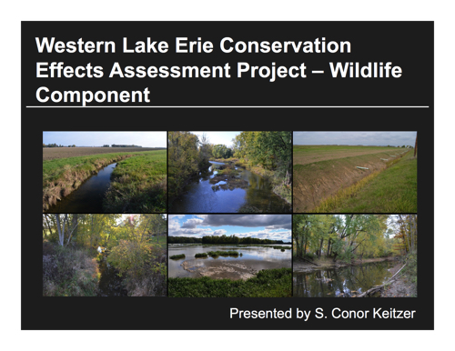 Western Lake Erie Conservation Effects Assessment Project – Wildlife Component